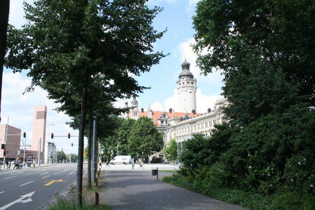 """Bäume mitten in der """"steinernen Stadt"""". Foto: Ralf Julke"""