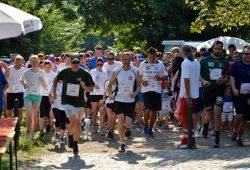323 Läufer beim 2. Beneflitz 2015. 2016 möchten die Veranstalter mehr ... Foto: Julian Rossig
