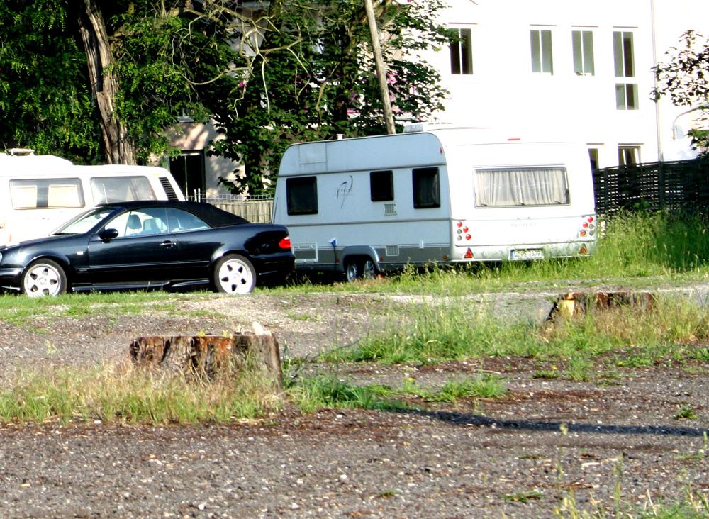 Auf der Nordseite des Felsenkellers wurde komplett alles gefällt. Foto: Ralf Julke