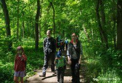 Spaziergang im Auwald. Foto: Ludo van den Bogaert