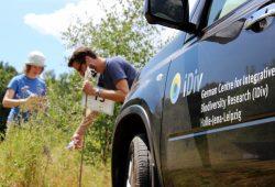iDiv-Wissenschaftler bei Vegetationsaufnahme. Feldarbeit ist ein wichtiger Bestandteil der iDiv-Forschung. Foto: Stefan Bernhardt, iDiv