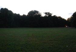 Samstagabend, 18 Grad, Clara-Zetkin-Park. Wenn Deutschland spielt, bleiben die meisten Wiesen leer. Foto: L-IZ.de