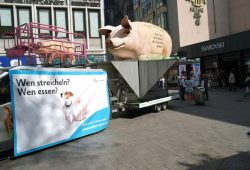 GrunzMobil April 2015 in Köln. Foto: Albert Schweitzer Stiftung für unsere Mitwelt