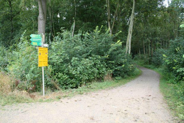 Startpunkt war an der Gundorfer Linie. Foto: Ralf Julke