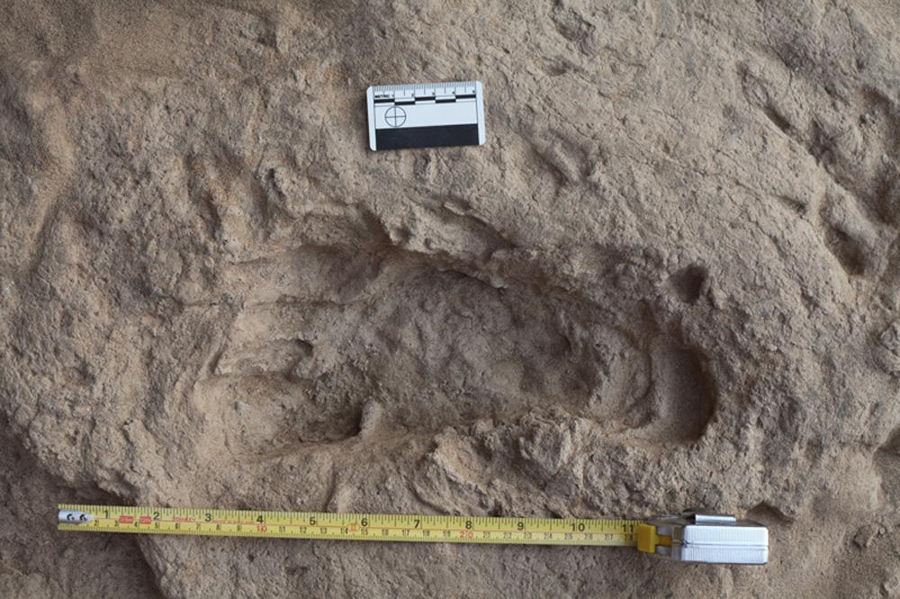1,5 Millionen Jahre alte Fußabdrücke des Homo erectus. Foto: MPI für evolutionäre Anthropologie, Kevin Hatala