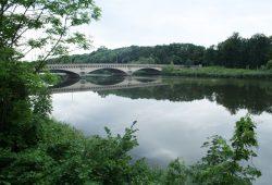 Das Elsterbecken an der Landauerbrücke. Foto: Ralf Julke