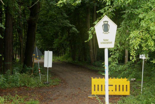 Manchmal verwirren auch Schilderwälder im Wald. Foto: Ralf Julke