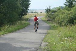 Radweg am Cospudener See. Foto: Ralf Julke
