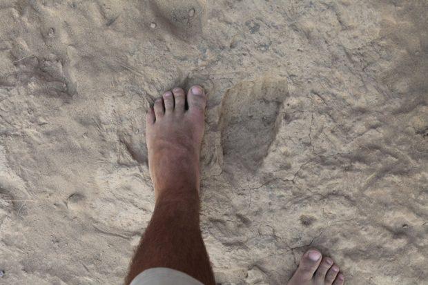 Der fossile Fußabdruck ist von dem einen modernen Menschen kaum zu unterscheiden. Foto: MPI für evolutionäre Anthropologie, Kevin Hatala