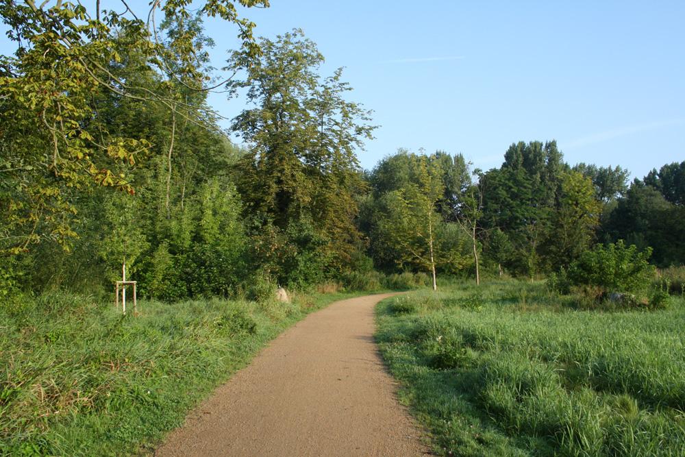 Der Parthe-Mulde-Radweg im Abtnaundorfer Park. Foto: Ralf Julke