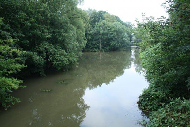 Zusammenfluss von Elstermühlgraben (links) und Weißer Elster an der Marienbrücke im Rosental. Foto: Ralf Julke