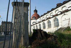 Felsenkeller mit Baumstumpf. Foto: Ralf Julke