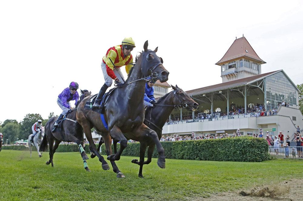Insgesamt 54 Pferde traten in sieben Rennen zum Familienrenntag im Scheibenholz an und wurden von 4.000 Besuchern frenetisch bejubelt. Foto: Scheibenholz GmbH
