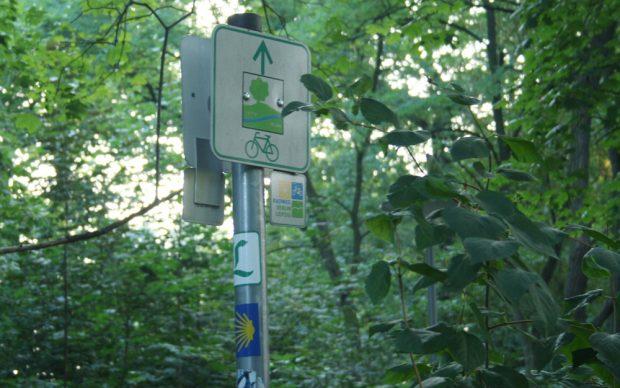Wegweiser im Mariannenpark: Dieselbe Route nutzen auch der Fernradweg Leipzig - Berlin, der Lutherweg (das grüne L) und der Jakobsweg (die gelbe Muschel). Foto: Ralf Julke