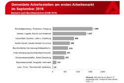 Die gemeldeten freien Stellen nach Berufsgruppen. Grafik: Arbeitsagentur Leipzig