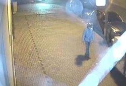 Wer kann den Täter identifizieren? Seit dem 30.09. wird öffentlich gefahndet. Foto: PD Dresden