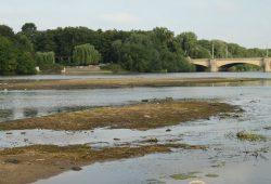 Tonnen von Schwemmmaterial im Elsterbecken. Foto: Ralf Julke