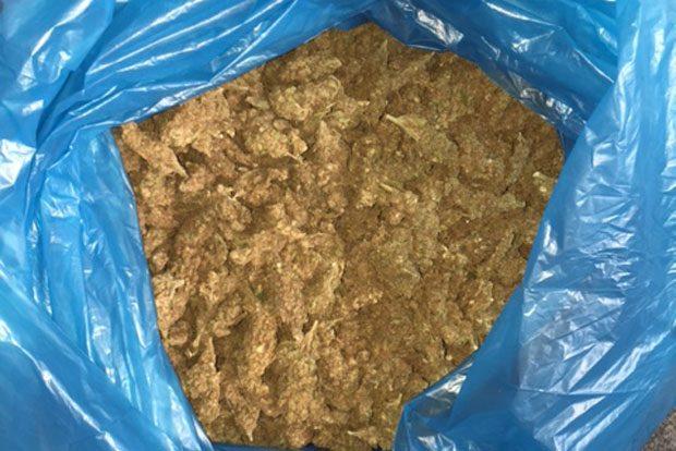 6,7 kg Marihuana, sichergestellt von der Polizei Leipzig. Foto: PD Leipzig