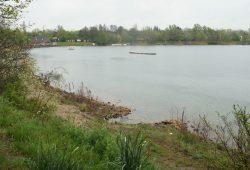 Ostufer des Kulkwitzer Sees. Foto: Ralf Julke