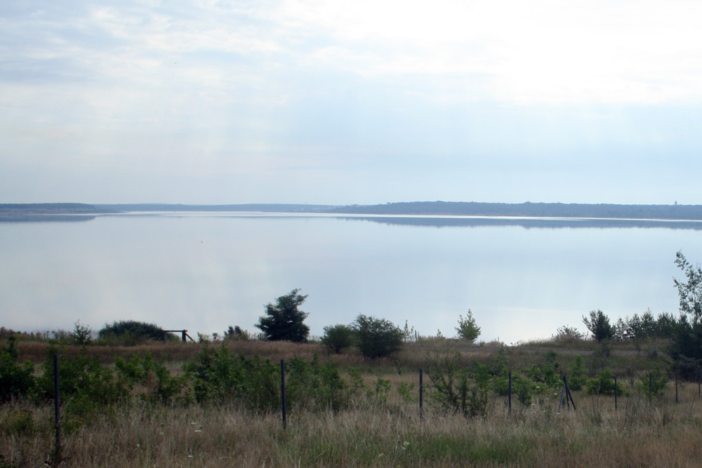Der Zwenkauer See. Foto: Ralf Julke