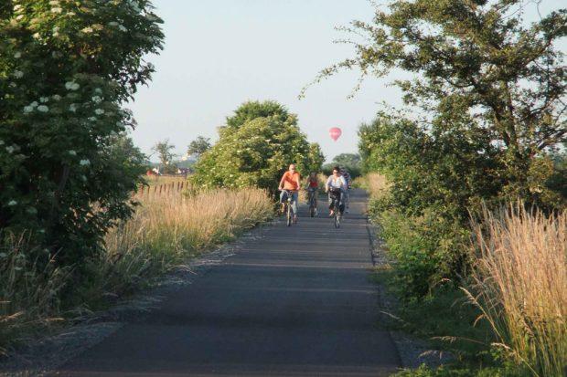 Beliebter Elster-Saale-Radweg im Sommer. Foto: Stadt Markranstädt