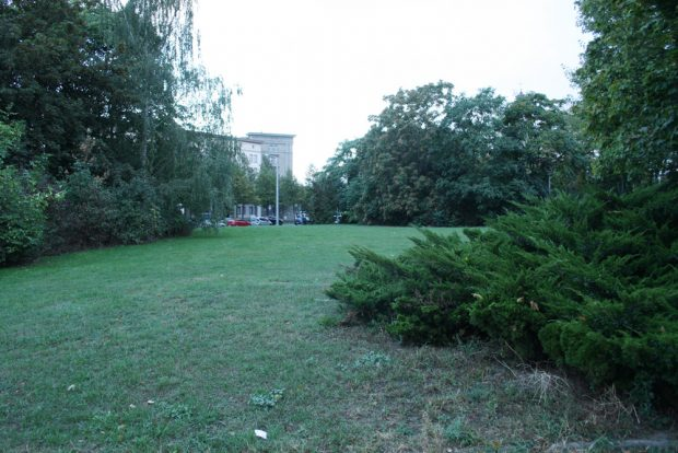 Blick in die Grünanlage zwischen Brüderstraße und Windmühlenstraße. Foto: Ralf Julke