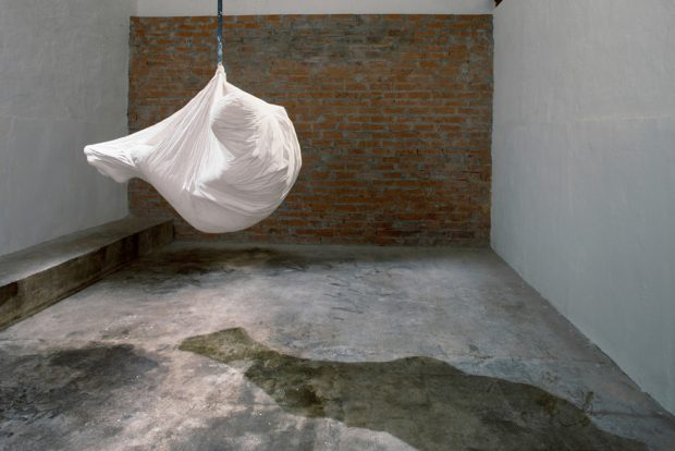 Agnes Lammert (2013).