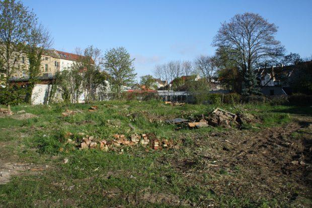 Verschwunden: Nachbarschaftsgärten an der Siemeringstraße. Foto: Ralf Julke