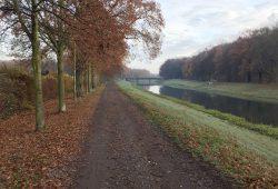 Der Radweg am Elsterflutbett. Foto: Fraktion Bündnis 90 / Die Grünen