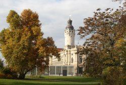 Turm des Neuen Rathauses im Herbst. Foto: Ralf Julke