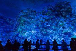 Besucher im 360°-Panorama Great Barrier Reef. Foto: Tom Schulze