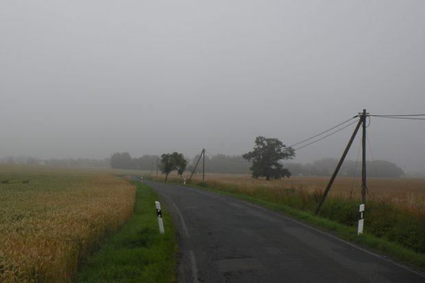Straße im Morgendunst. Foto: Marko Hofmann
