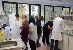 Schüler bei Laborversuchen im BSZ Böhlen. Foto: BSZ Böhlen