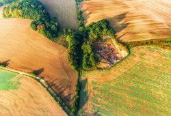 Hecken als ökologische Vorrangfläche im Eichsfeld: Biotopvernetzung für Fauna und Flora. Foto: UFZ, Thomas Hesse