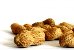 Ein paar Peanuts fürs kreative Volk. Foto: Ralf Julke