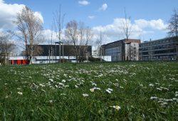 Der künftige Bauplatz an der Jablonowskistraße. Foto: Ralf Julke