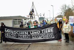 Wiesenhof Besetzung am 20. Mär 2017. Foto: tierfabriken-widerstand.org