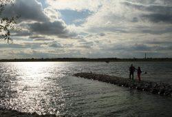 Der Markkleeberger See. Foto: Ralf Julke