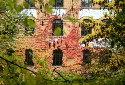 Wiedebach-Schule im Herbst. Foto: Ralf Julke