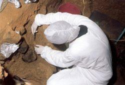 Auch in der Höhle El Sidrón in Spanien haben Forscher DNA-Spuren im Boden gefunden. Foto: El Sidrón Forschungsteam