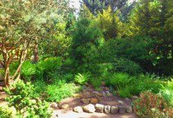 Botanischer Lehrgarten. Foto: Schulbiologiezentrum