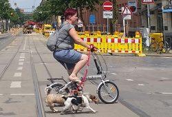 Radfahren in Schleußig. Foto: Marko Hofmann