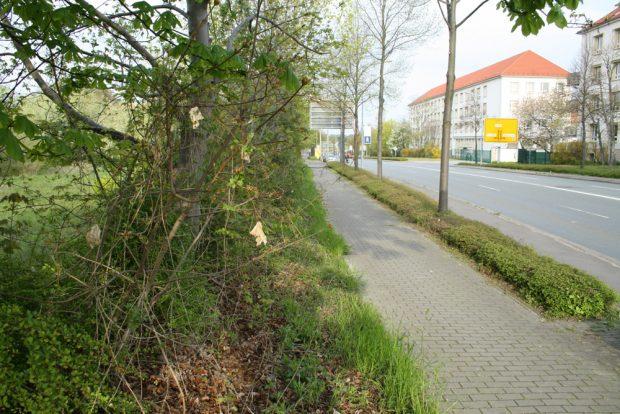 Die geplante Baustelle für das Polizeirevier Nord in der Essener Straße. Foto: Ralf Julke
