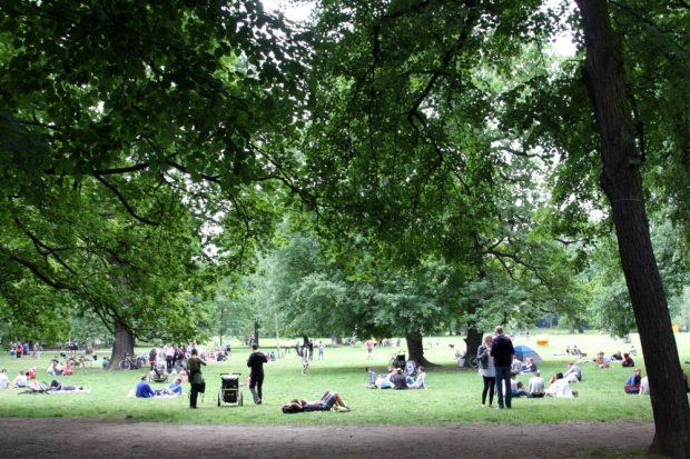 Chillen im Park bei der Ökofete- Foto: L-IZ.de
