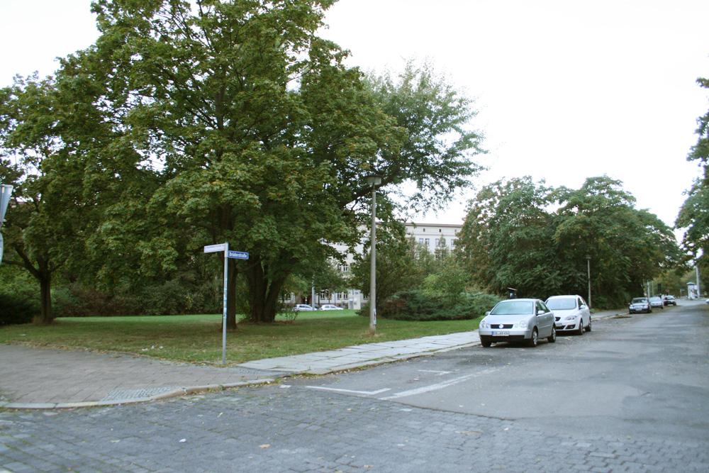 Die Grünfläche an der Brüderstraße im Jahr 2017. Foto: Ralf Julke