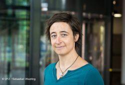 Dr. Annika Jahnke. Foto: UFZ/Sebastian Wiedling