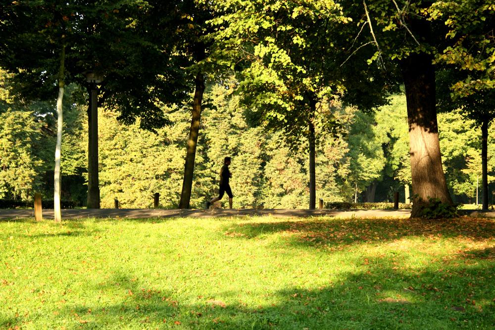 Jogger im Clara-Zetkin-Park. Foto: Ralf Julke