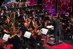 Das Orchester der Musikalischen Komödie. Foto: Oper Leipzig, Tom Schulze