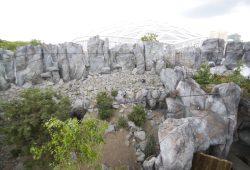Die neue Himalaya-Landschaft. Foto: Zoo Leipzig