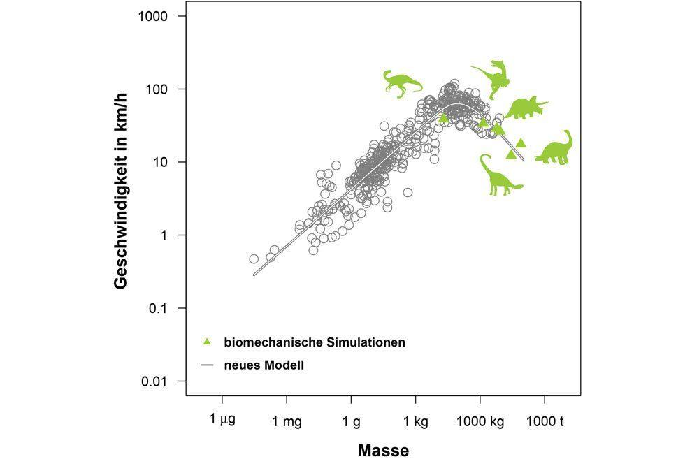 Die Geschwindigkeitskurve der Saurier. Grafik: iDiV